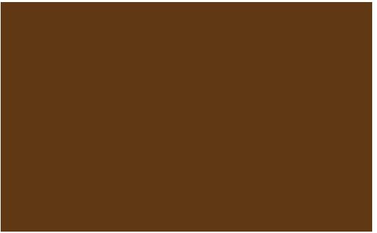 mucca2_macelleriedelgusto